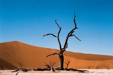 A trip to Namibia was delayed, costing a reader more than £3,000 - Credit: GETTY