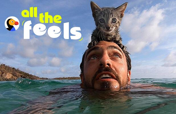 Quibi's 'All the Feels' Aims to Give Animal Lovers Their Daily Fix of Heartwarming Content (Exclusive)