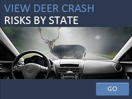 Deer crashes by state
