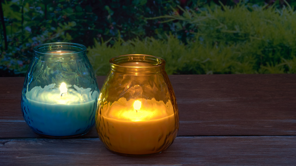 The fresh, lemongrass scent of Citronella smells pretty good, too.
