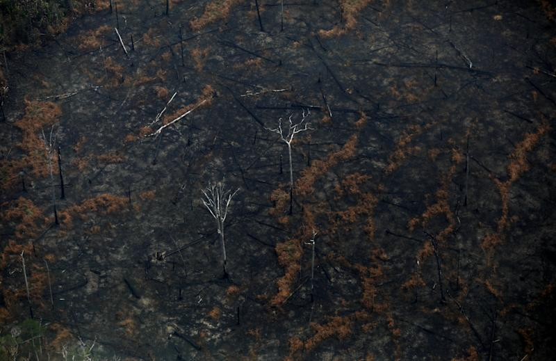 An aerial view of a deforested plot of the Amazon in Boca do Acre, Amazonas state, Brazil August 24, 2019. REUTERS/Bruno Kelly