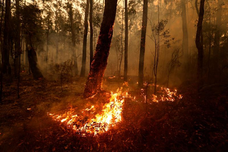 ORBOST, AUSTRALIA - JANUARY 05: Small spot fires still burn on January 05, 2020 between Orbost and Cann River along the Princes Highway, Australia. Two people are dead and 6 remain unaccounted for as bushfires continue to burn across the East Gippsland area. Victorian premier Daniel Andrews has declared a state of disaster in the region, compelling residents in threatened areas to evacuate. Thousands of people remain stranded in the coastal town of Mallacoota and are being evacuated by navy ships to Melbourne. Image: Getty