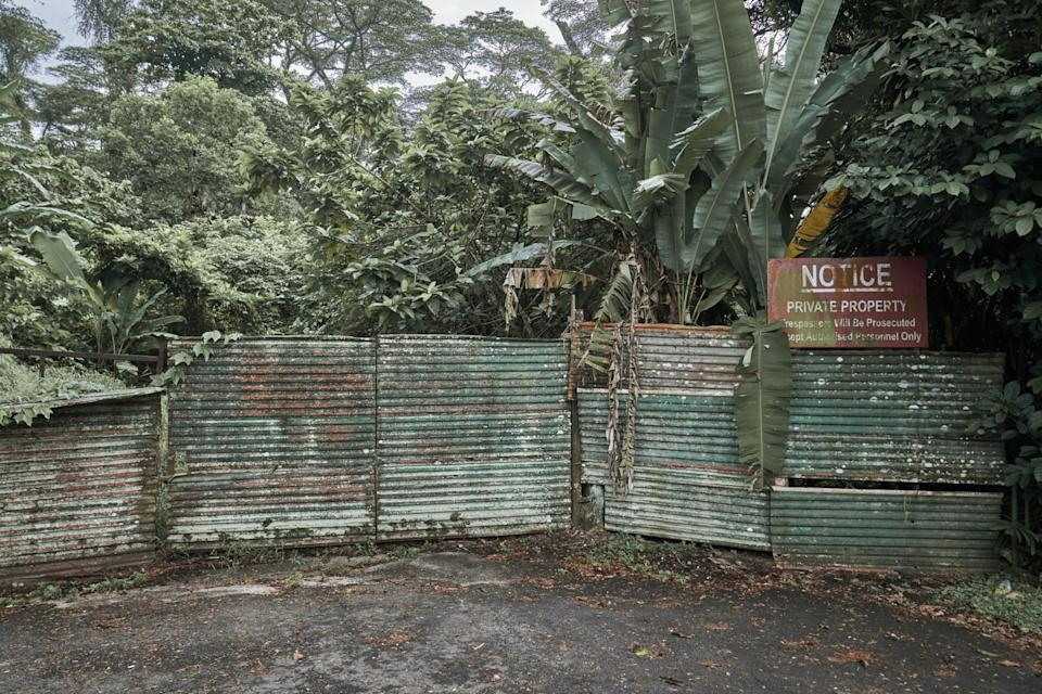 A locked gate on a plot of untended jungle that was formerly Istana Woodneuk on Holland Road in Singapore. (PHOTO: Lauryn Ishak/Bloomberg)