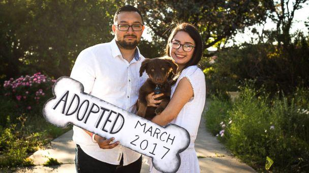 PHOTO: Clarissa Quintana and Ivan Figueroa celebrated their new recue puppy, Owen, with these cute photos. (Shelby B Photography)