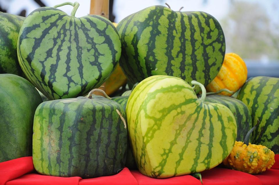 watermelons in the shape of hearts