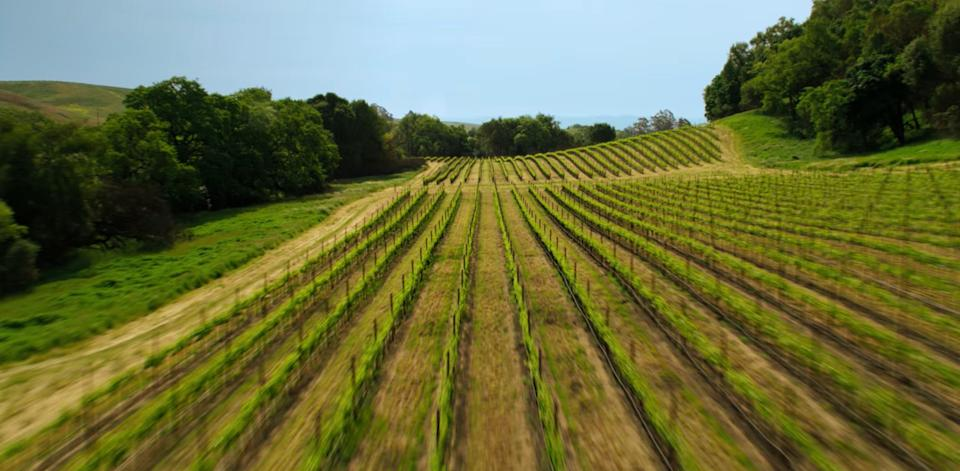 """A scene in """"Wine Country."""" (Photo: Netflix)"""