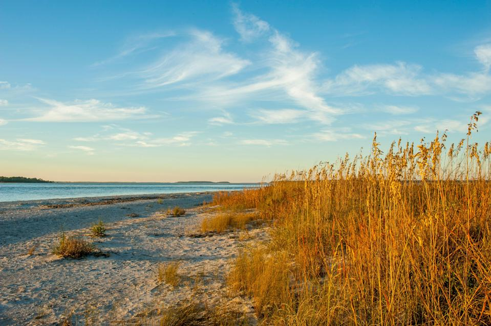 <p><strong>Give us the wide-angle view: what kind of beach are we talking about?</strong><br> Located at the Southern tip of Edisto Island, this beach's four-and-a-half miles of coastline and sands remain a picture of tranquillity, thanks mostly to very low levels of development. It's part of the ACE Basin, a beautiful estuary; at Edisto, where the Edisto River meets the Atlantic, the wetlands and hardwood forests make way for long stretches of shell-rich sands.</p> <p><strong>How accessible is it?</strong><br> The beach is about 60 miles outside of downtown Charleston, with Highway 174 meandering its way through the changing landscapes. In total, there are 37 beach access points with parking, and it's $8 to enter the State Park.</p> <p><strong>Decent services and facilities, would you say?</strong><br> Preserving the natural beauty of the area means amenities are relatively scarce outside the park; but inside the park, there is much more, including four miles of ADA accessible trails, cabins on the saltmarsh, and two campgrounds with 120 sites that accommodate RVs or tents.</p> <p><strong>How's the actual beach stuff—sand and surf?</strong><br> The clean sands and gentle waters make Edisto a perfect spot for families, with children safe to paddle in the lapping tides and forage treasures that are more likely to be seashells than broken beer bottles. Swimming and walking are about as energetic as things get in this part of the world, though you can also fish and hike.</p> <p><strong>Can we go barefoot?</strong><br> Although there are stretches of smooth sand, the beach is also one of the more shell-strewn areas in the region; you'll want to strap on some decent footwear.</p> <p><strong>Anything special we should look for?</strong><br> It's about a 30-minute walk from the welcome center, but if you're looking for shells, fossils, and shark's teeth, then wander out to Jeremy's Inlet at low tide, and spend a while sifting through the gems that have washed up on the sho