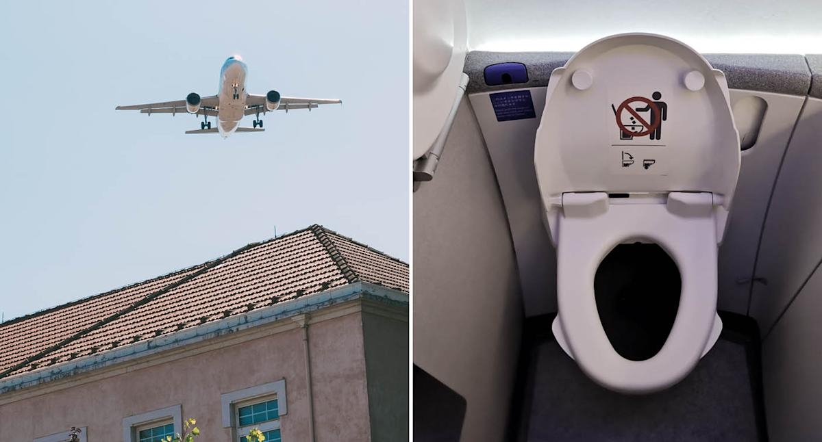 Poo drops from plane and covers man in his garden
