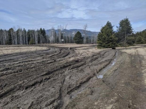The B.C. government has restricted access to Brilliant Flats, following increasing complaints from local residents about the damage done by mud bogging motor vehicles. (Submitted - image credit)
