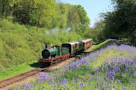 "<p>Travel by train through Sussex and you're in for an all-round treat. There are seals to spot in Chichester's harbour, sprawling stately homes to visit, like Goodwood House, and deer to look out for at wonderful Petworth House. </p><p>It's also where you'll find the delightful Bluebell Railway, one of the best steam train journeys in England. Its vintage steam locomotives and carriages have been wonderfully preserved and the railway's station Horsted Keynes is so quaint that it's featured on TV, in the likes of Downton Abbey. A journey on the Bluebell takes you 11 miles from East Grinstead to Sheffield Park, as you pass the pretty surroundings.</p><p><a class=""link rapid-noclick-resp"" href=""https://www.goodhousekeepingholidays.com/tours/bluebell-railway-sussex-chichester-stately-homes-tour"" rel=""nofollow noopener"" target=""_blank"" data-ylk=""slk:BOOK A TRIP"">BOOK A TRIP</a></p>"