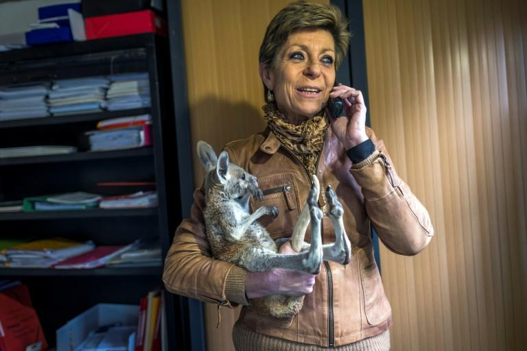 Carole Masson, director of the Australian Park wildlife reserve in Carcassonne, says the response has been overwhelming