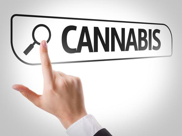 Finger pointing to magnifying glass icon to search for cannabis.
