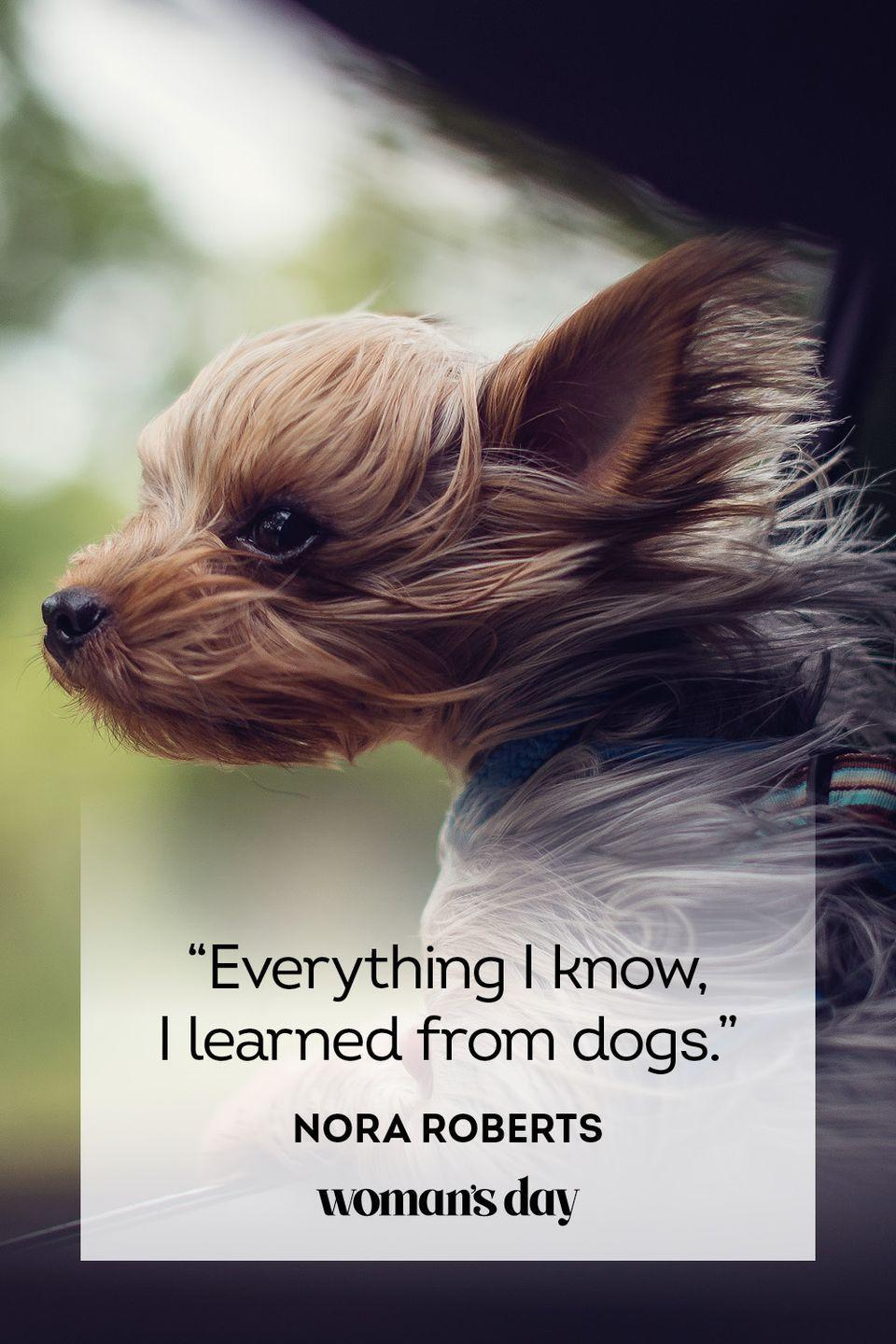 """<p>""""Everything I know, I learned from dogs.""""</p>"""