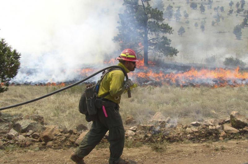 A firefighter works an area along the northwest perimeter of a massive blaze in the Gila National Forest in New Mexico in this photo made on Wednesday, May 30, 2012, and released by the U.S. Forest Service Friday. More than 1,200 firefighters are battling the fire that has burned nearly 217,000 acres in an isolated mountainous area of southwestern New Mexico. (AP Photo/U.S. Forest Service, Alan Sinclair)