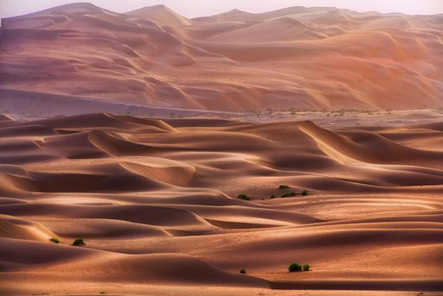"<p>""My favorite place is the Maliha desert because there are mountains around and some fossil in the middle of the desert."" (Photo: Anushka Eranga/Caters News) </p>"