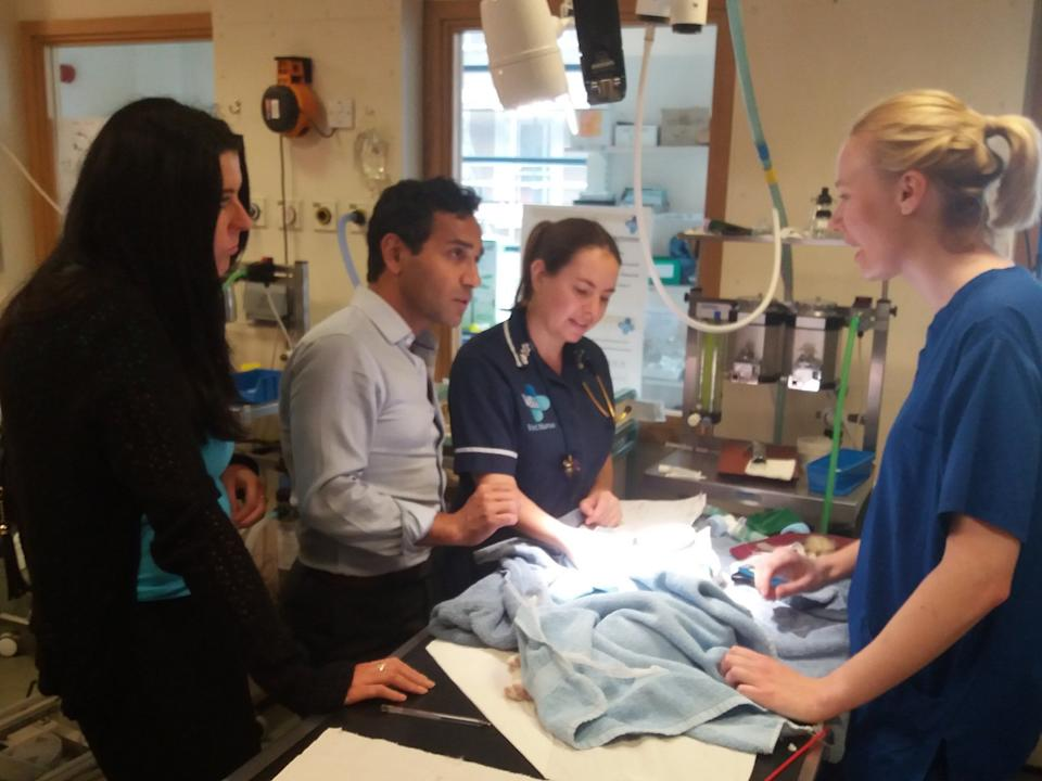 Mandy and Rehman at Blue Cross Victoria, who have pledged to back the Cats Bill. Staff explain that the victim has a broken jaw, the most common injury. (Mandy Lowe)