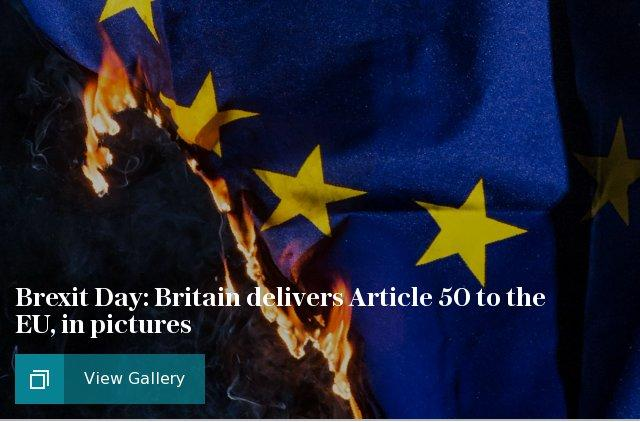 Article 50 gallery puff