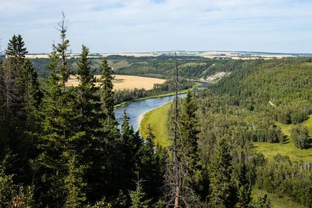 The Nature Conservancy of Canada's Bower property near Red Deer, Alta. on Friday, Aug. 28, 2020. The land was donated by the Bower sisters, who inherited it from their father.