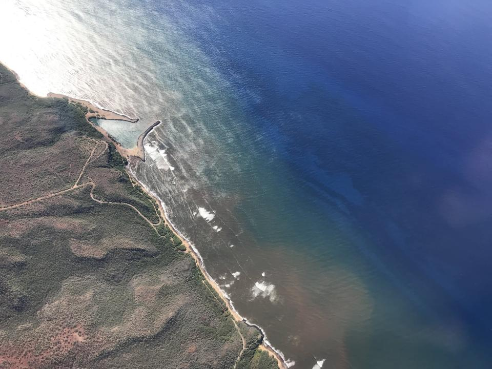 In this undated 2020 aerial photo provided by the Arizona State University's Global Airborne Observatory, runoff from the island of Molokai in Hawaii is shown flowing into the ocean. Axis deer, a species native to India that were presented as a gift from Hong Kong to the king of Hawaii in 1868, have fed hunters and their families on the rural island of Molokai for generations. But for the community of about 7,500 people where self-sustainability is a way of life, the invasive deer are a cherished food source but also a danger to the island ecosystem. Now, the proliferation of the non-native deer and drought on Molokai have brought the problem into focus. Hundreds of deer have died from starvation, stretching thin the island's limited resources. When deer devour fruits, vegetables and other plants, it leads to to erosion and runoff into the ocean that alters the island's coral reef— another important food source. (Global Airborne Observatory, Arizona State University via AP)