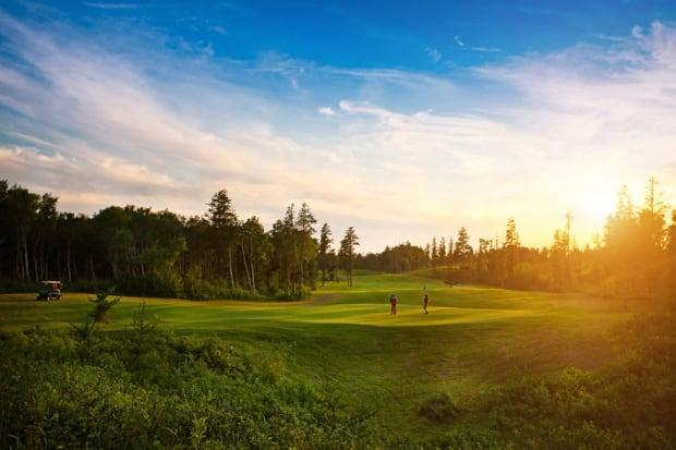 Golf boomed last summer during the pandemic. Now indoor golf options in Saskatchewan have had a banner year.