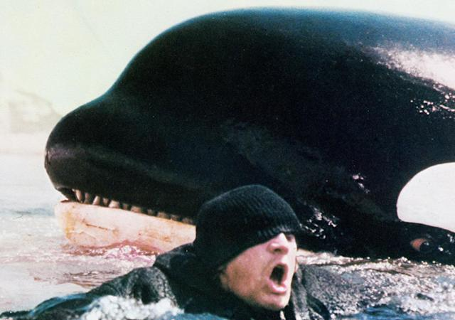 <p>In which legendary producer Dino De Laurentiis sees the giant killer shark from <em>Jaws</em> and counters with a giant killer whale. Richard Harris, Charlotte Rampling, and Bo Derek seem perfectly content to play second fiddle to Orca, while Ennio Morricone provides the scene-setting score. (Photo: Everett)<br></p>