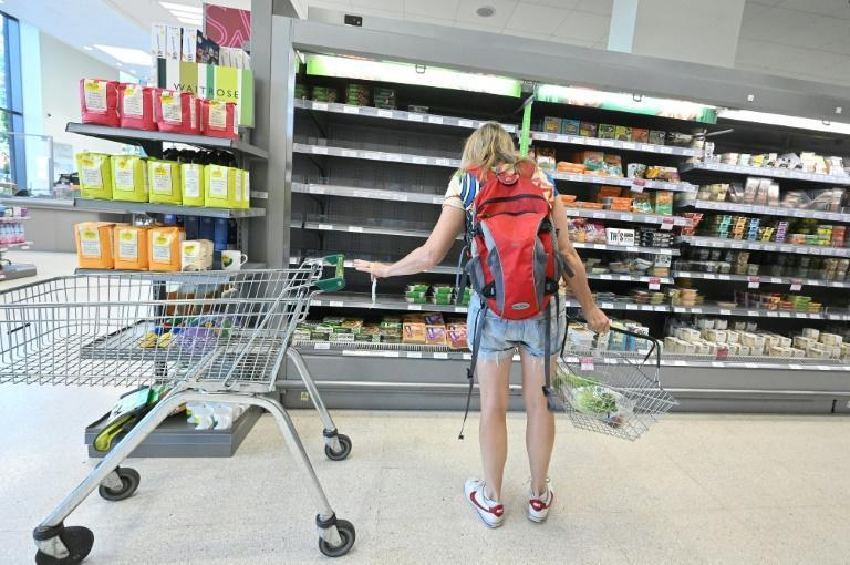 One shop assistant said some customers blamed them for the shortages (AFP/JUSTIN TALLIS)