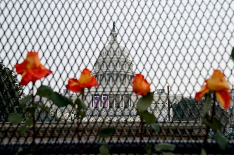 Flowers are placed in security fencing around the U.S. Capitol days after supporters of U.S. President Donald Trump stormed the Capitol in Washington