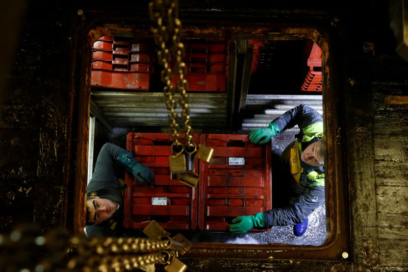 """Fishermen of French trawler """"Notre Dame de Boulogne"""" unload crates of fish in the port of Boulogne-sur-Mer"""