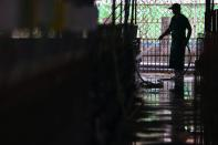 A staff member cleans a pig farm in Pingtung