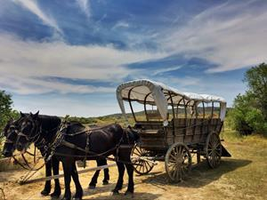 Historic Trails West offers horseback trail rides and wagon rides along the Oregon Trail in Casper, Wyoming.