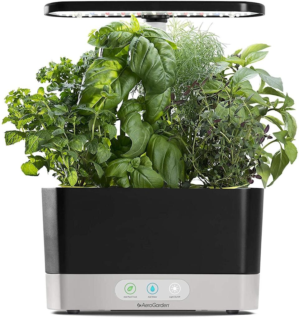 <p>Know someone with a green thumb? Get them this <span>AeroGarden Harvest-Black Indoor Hydroponic Garden</span> ($100) for indoors.</p>