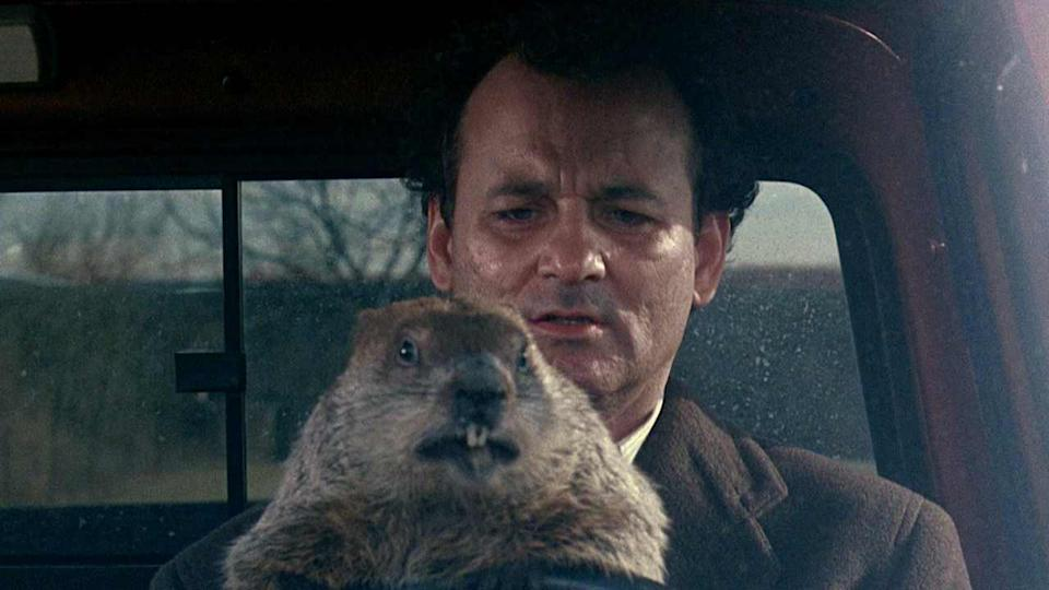 A still from Groundhog Day