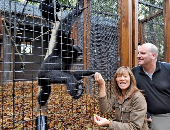 Anna Ryder Richardson prosecuted after toddler and mum hit by tree at her zoo