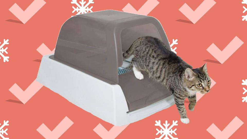 This self-cleaning litter box is extremely convenient—and now it's on sale.