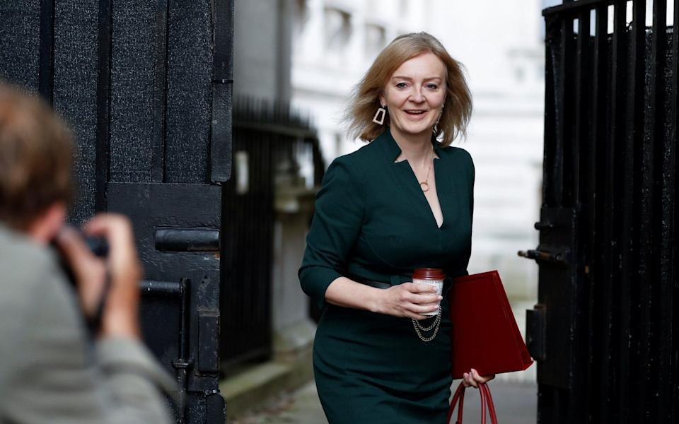 Liz Truss has been promoted - but is the role an elephant trap? - Reuters