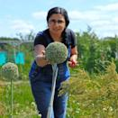 """<p>Garden and food writer Rekha knows a thing or two about growing impressive vegetables. After appearing on BBC Two's The Big Allotment Challenge in 2015, she went on to study RHS Horticulture in pursuit of a career in the horticulture industry. Specialising in growing plants and creating seasonal recipes, Rekha has all you need to know about organic homegrown produce. </p><p><a href=""""https://www.instagram.com/p/CK-4uPxAsaw/"""" rel=""""nofollow noopener"""" target=""""_blank"""" data-ylk=""""slk:See the original post on Instagram"""" class=""""link rapid-noclick-resp"""">See the original post on Instagram</a></p>"""