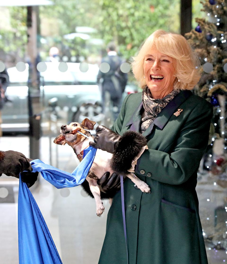 The Duchess of Cornwall with Beth, her jack-russell terrier, unveiling a plaque as they visit the Battersea Dogs and Cats Home to open the new kennels and thank the centre's staff and supporters.