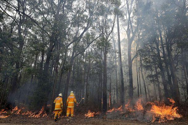 PHOTO:Firefighters manage a controlled burn near Tomerong, Australia, Jan. 8, 2020, in an effort to contain a larger fire nearby. (Rick Rycroft/AP)