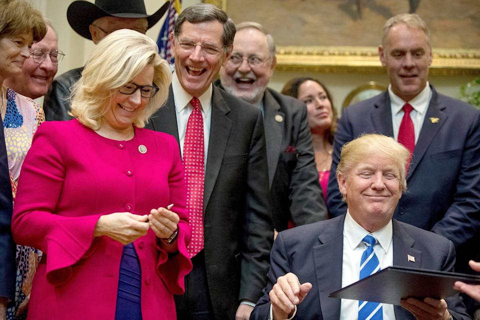 Liz Cheney pictured with Donald Trump.