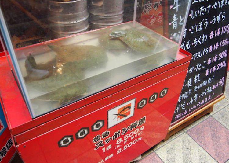 ▲A Suppon (softshell turtle) restaurant in the Osaka style