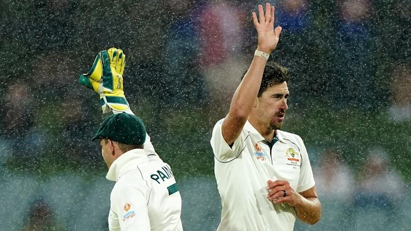 Mitchell Starc and Tim Paine celebrate another wicket as rain falls in the second Test