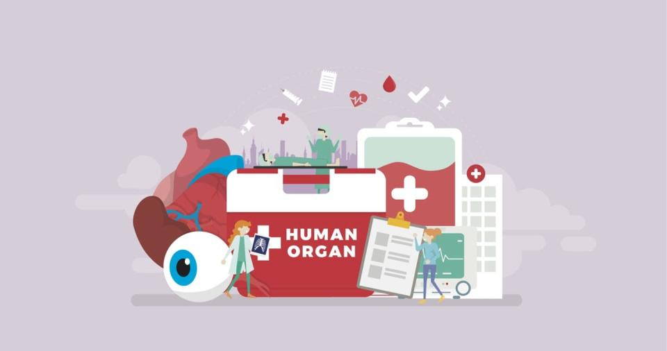 Illustration of a Human Organ cooler, paperwork and donor organs