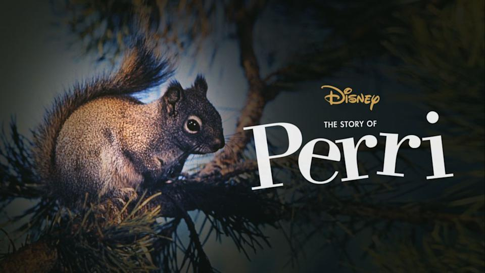 Live the inner-life of a squirrel, like never before (Photo: Disney)