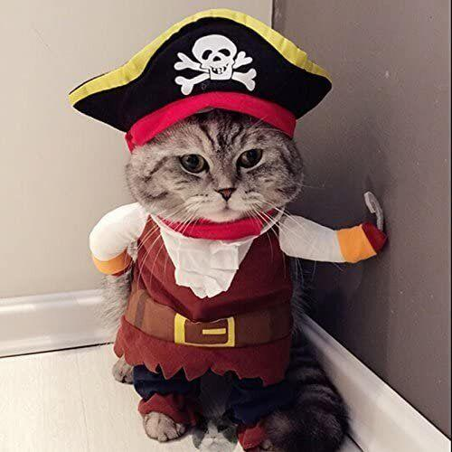 """Get this <a href=""""https://amzn.to/37eQ3cu"""" target=""""_blank"""" rel=""""noopener noreferrer"""">Idepet Pirate Costume for $11</a> at Amazon.It's available in sizes medium, large and extra-large, and features an adorable pirate hat."""