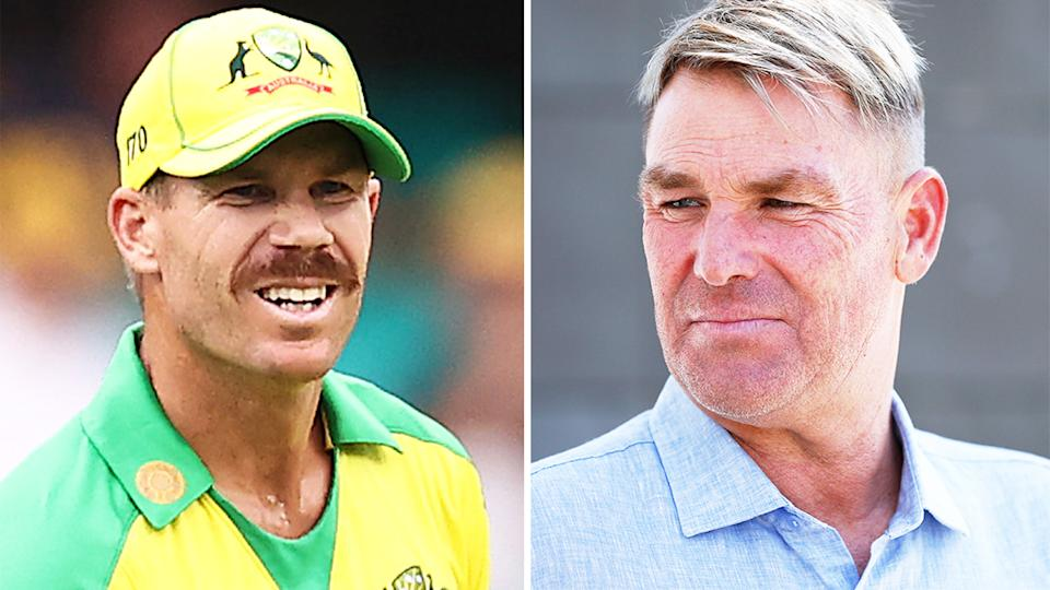 Shane Warne (pictured right) before an interview and David Warner (pictured left) during a match.