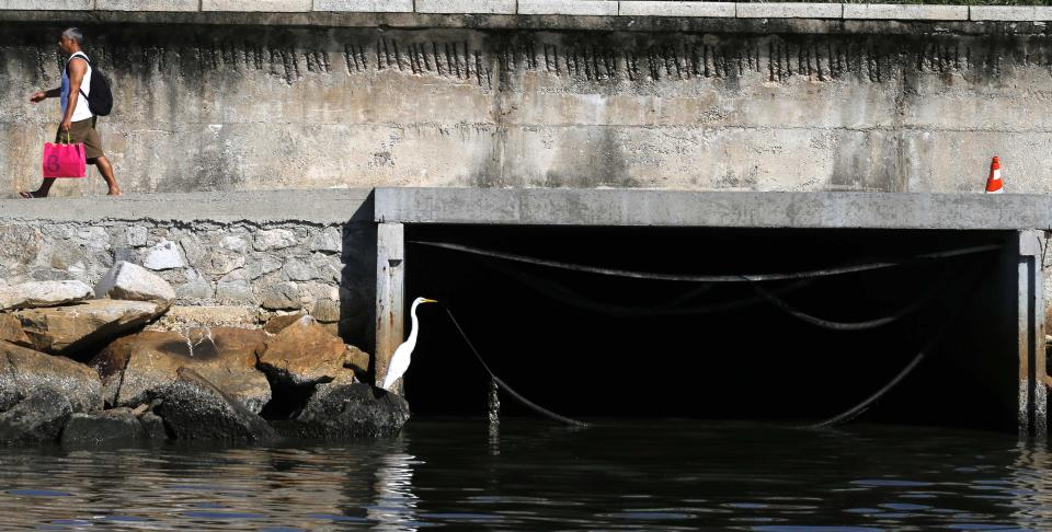 A bird sits next to a sewage canal at the Guanabara Bay in Rio de Janeiro March 12, 2014. According to the local media, the city of Rio de Janeiro continues to face criticism locally and abroad that the bodies of water it plans to use for competition in the 2016 Olympic Games are too polluted to host events. Untreated sewage and trash frequently find their way into the Atlantic waters of Copacabana Beach and Guanabara Bay - both future sites to events such as marathon swimming, sailing and triathlon events. Picture taken on March 12, 2014. REUTERS/Sergio Moraes (BRAZIL - Tags: ENVIRONMENT SPORT OLYMPICS)