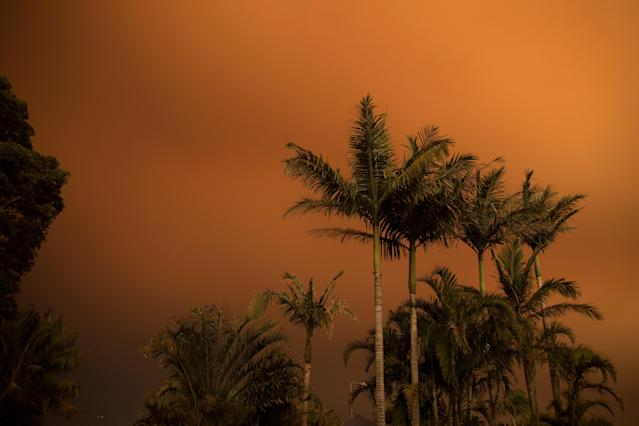 Los incendios en Australia dejan un panorama desolador. (Cassie Spencer/Getty Images)