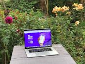My workspace, my garden!