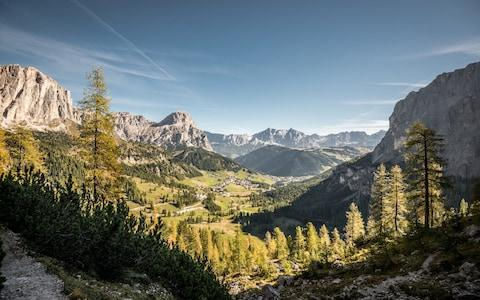The bear is roaming the Dolomites in northern Italy, between the provinces of Trentino and South Tyrol