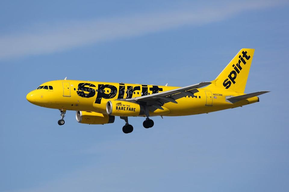 <p>The assault took place while passengers were boarding a Spirit Airlines flight</p>